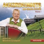 Akkordeonhits von Slavko Avsenik gespielt von Manfred Gradwohl, Vol. 1