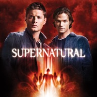 Supernatural, Season 5 (iTunes)