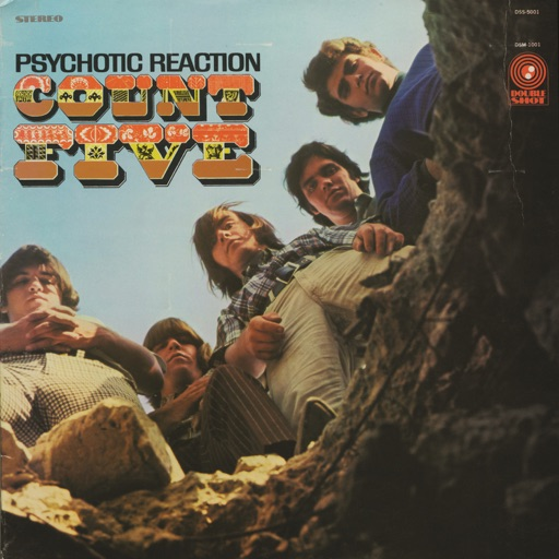 Psychotic Reaction - Count Five