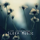 Sleep Music Academy - Deep Sleep Music - 101 Sleep Songs for Sleeping, Sounds of Nature to Relax & Falling Asleep at Night  artwork