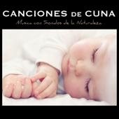 Canciones de Cuna Relajantes y para Bebes en el Vientre Materno - Música con Sonidos de la Naturaleza