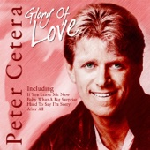 You're The Inspiration - Peter Cetera