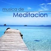 Música de Meditación – La Más Suave y Relajante Música Yoga y de Meditación con Sonidos de la Naturaleza