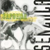 Centro Cultural Senzala de Capoeira
