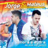 Download Flor (Ao Vivo) MP3