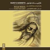 Rumi's Sonnets