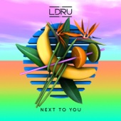 Next To You (feat. Savoi)