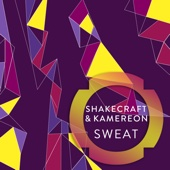 Shakecraft & Kamereon - Sweat artwork