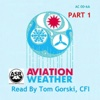 Aviation Weather, Pt. 1 (AC 00-6A)