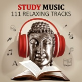 Study Music: 111 Relaxing Tracks for Learning and Reading that Helps to Focus and Concentrate, Effective Study, Relaxation & Meditation Sounds of Nature for Brain Power