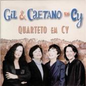 Gil & Caetano em Cy