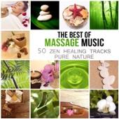The Best of Massage Music: 50 Healing Tracks Zen Pure Nature, Deep Relaxation, Meditation, Spa Wellness, Sleep Inducing & Reiki, Relaxing Therapy Rain & Ocean Waves