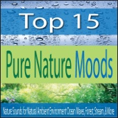 Top 15 Pure Nature Moods: Nature Sounds for Natural Ambient Environment Ocean Waves, Forest, Stream, & More