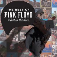A Foot In the Door: The Best of Pink Floyd, Pink Floyd