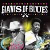 Giants of Blues, Muddy Waters & John Lee Hooker