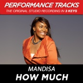 How Much (Performance Tracks) - EP cover art