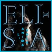 Elisa - L'anima vola artwork