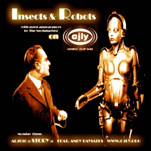 Insects and Robots