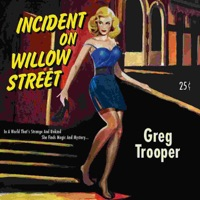 Incident On Willow Street