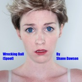 Wrecking Ball Spoof (feat. Kristin Findley)