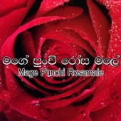 Hanthanera Payana Handa - Amarasiri Peiris