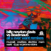 All U Ever Want Remixes (Billy Newton-Davis vs. deadmau5)