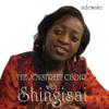 The Joystreet Choir & Shingisai - Ndewake artwork