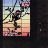 Suzume: 13 Japanese Birds Pt. 1 ジャケット写真