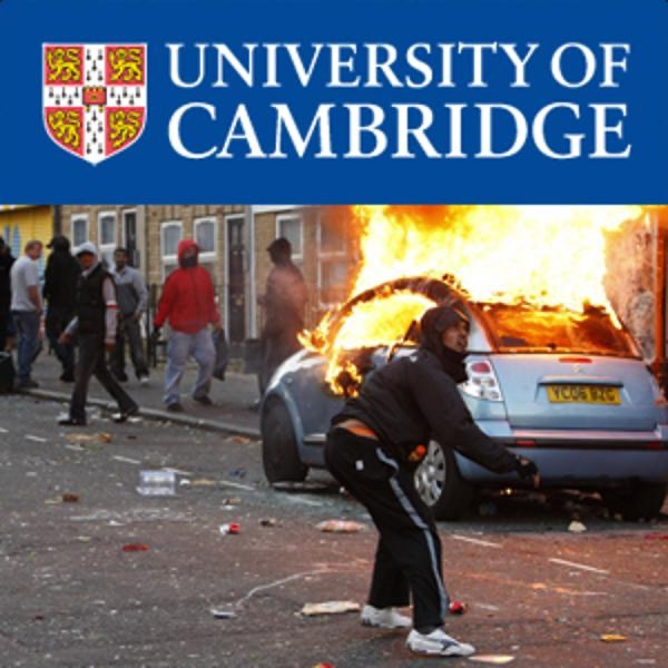 The English Riots in 2011: A Discussion from Different Criminological Perspectives