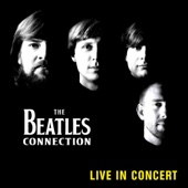 The Beatles Connection - Don't Let Me Down (Live)  artwork