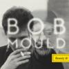 Beauty & Ruin, Bob Mould