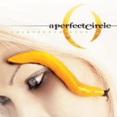 The Outsider - A Perfect Circle
