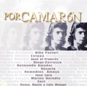 Por Camarón