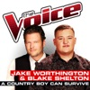 A Country Boy Can Survive (The Voice Performance) - Single, Jake Worthington & Blake Shelton