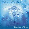 Watching It Rain - Single, Salmonella Dub