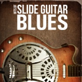 Hits of Slide Guitar Blues - Various Artists Cover Art