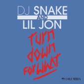 Turn Down For What - Single