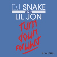 Turn Down For What - Single - DJ Snake & Lil Jon