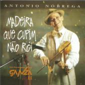 Ouça online e Baixe GRÁTIS [Download]: Madeira Que Cupim Não Rói MP3