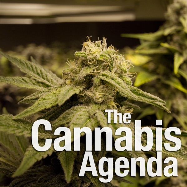The Cannabis Agenda Podcast - A weekly marijuana radio show distributed as a podcast. Hey, it's organic!