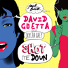 David Guetta - Shot Me Down (feat. Skylar Grey) ilustración