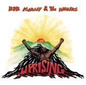 Coming In from the Cold - Bob Marley & The Wailers