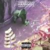 Harambe - Single