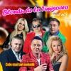 Blondu De La Timisoara Best Of