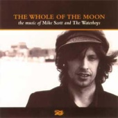 The Waterboys - The Whole of the Moon portada