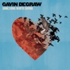 Something Worth Saving, Gavin DeGraw