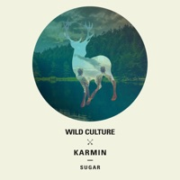 Wild Culture & Karmin - Sugar (Club Edit)