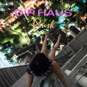 Dip Haus - Plush (Original Mix)
