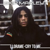 Llora Me (Cry to Me) [Kustom Mike Version] - Skip Marley