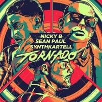 SYNTHKARTELL, Sean Paul & Nicky B - Tornado